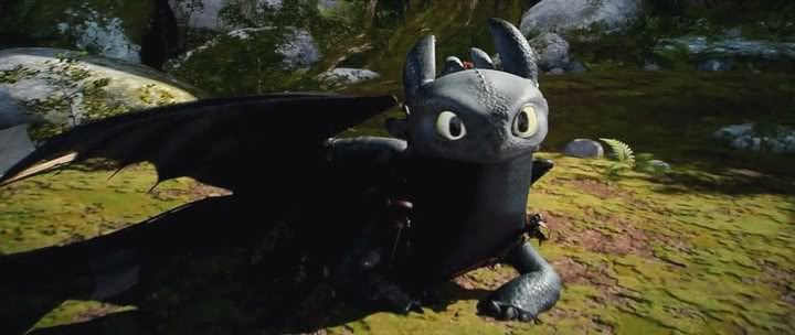 Toothless The Night Fury Hes So Damn Cool Cute Oh Gosh Look At His Flying Skills Looks Power And Also