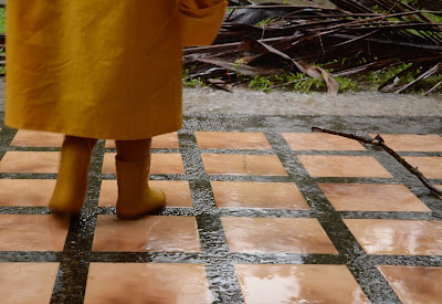 yellow raincoat and boots in backyard