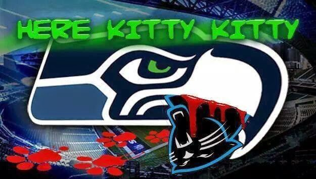 here kitty kitty - #seahawks #panthershaters