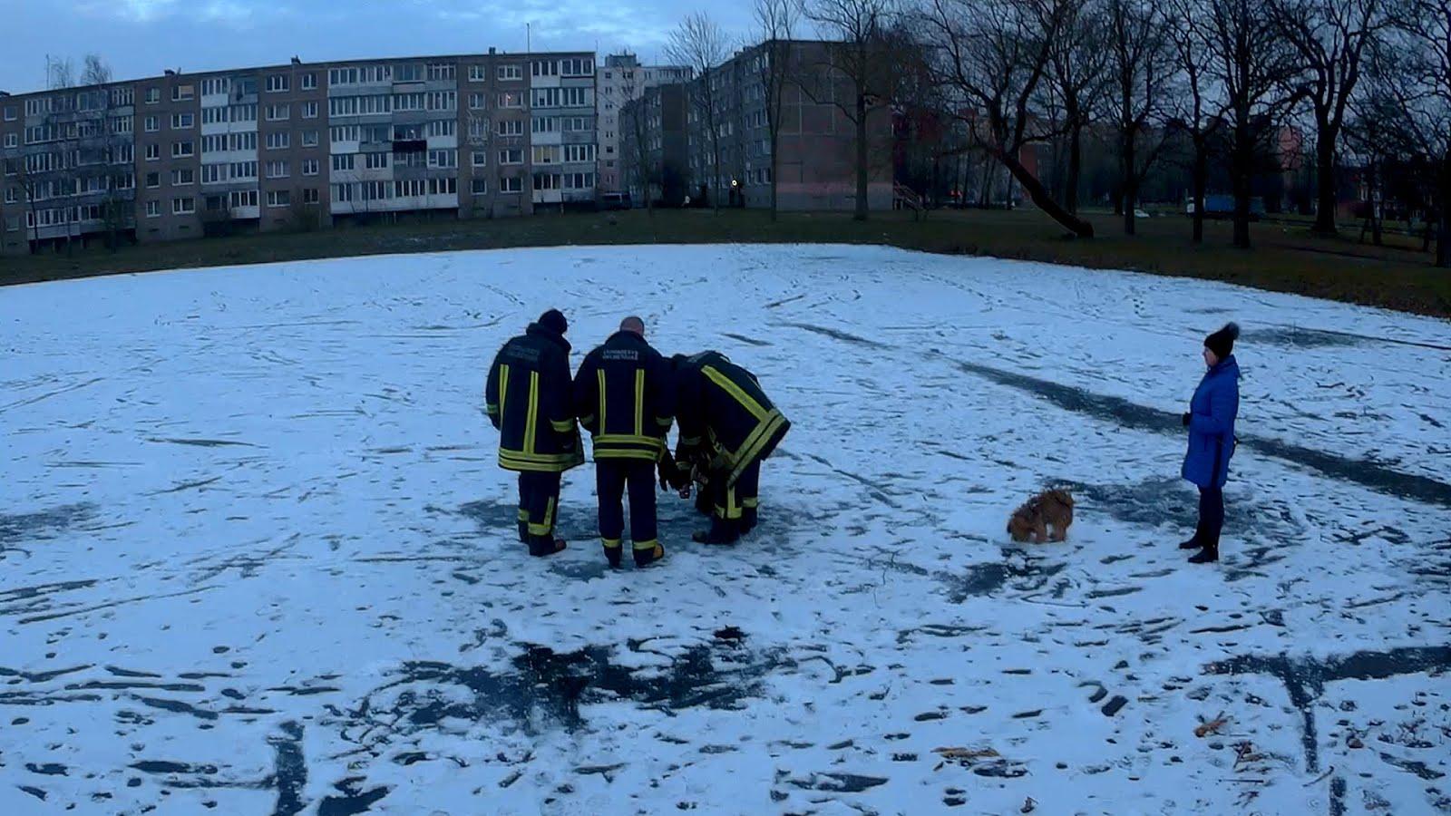 Пожарники на лёд