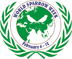 World Sparrow Week : February 6 - 12