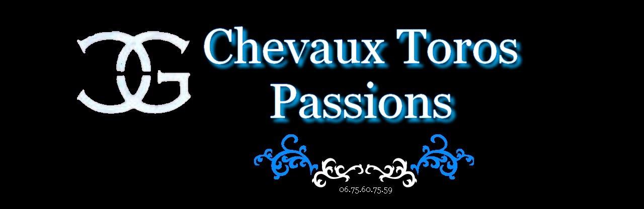 Chevaux Toros Passions