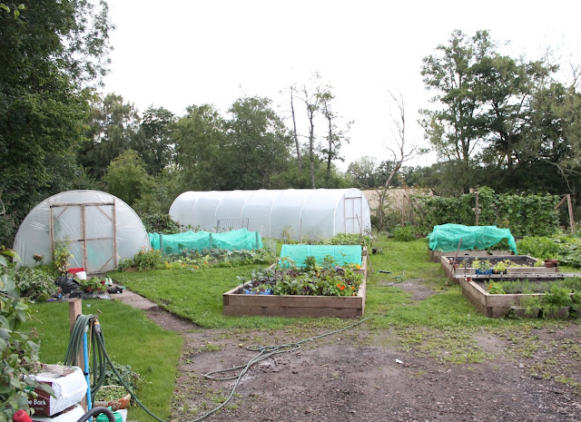 kitchen garden at Newbridge on Usk