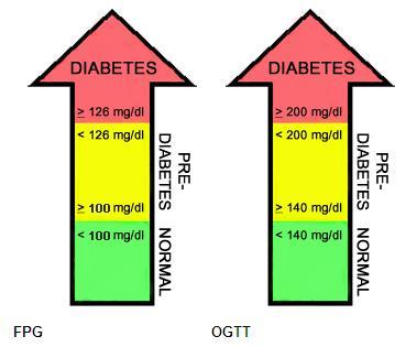 Diabetes Mellitus 1: Prueba de tolerancia a la glucosa