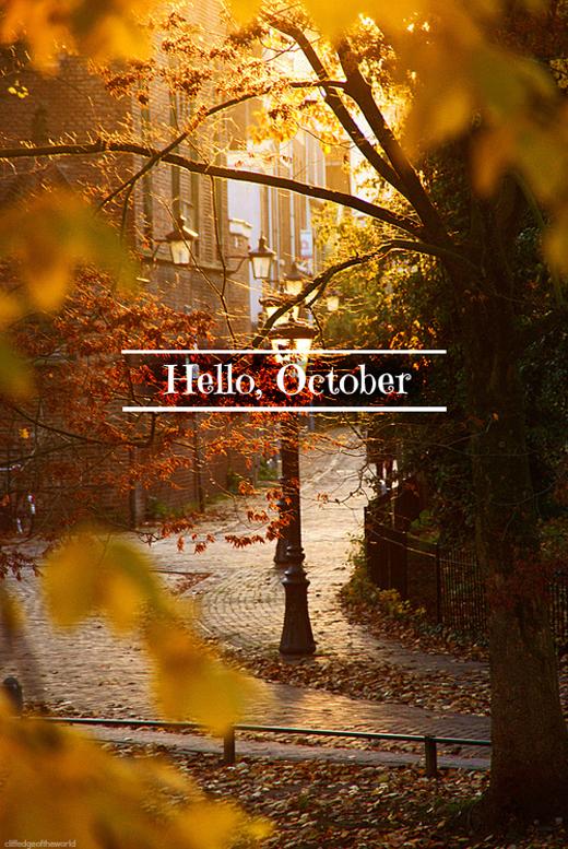 Беседка, октябрь  Tumblr_mb7qmnkLI01qd6xnoo1_500