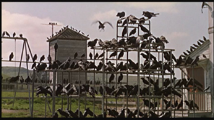 chilling horror film that succeeds in infusing birds with ...