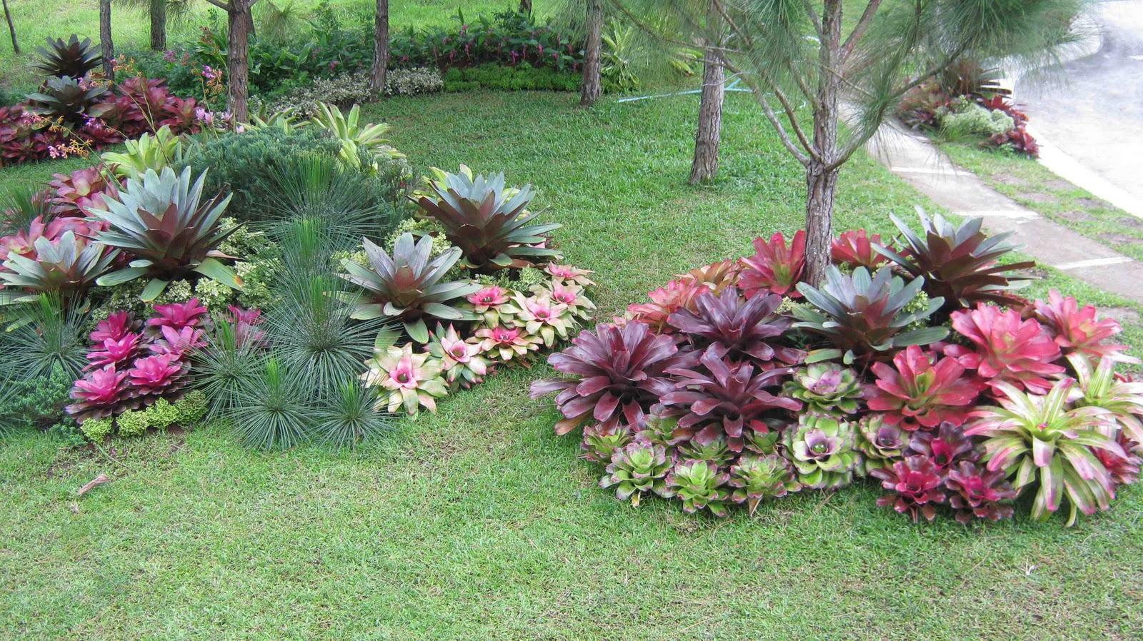 Philippine Gardener