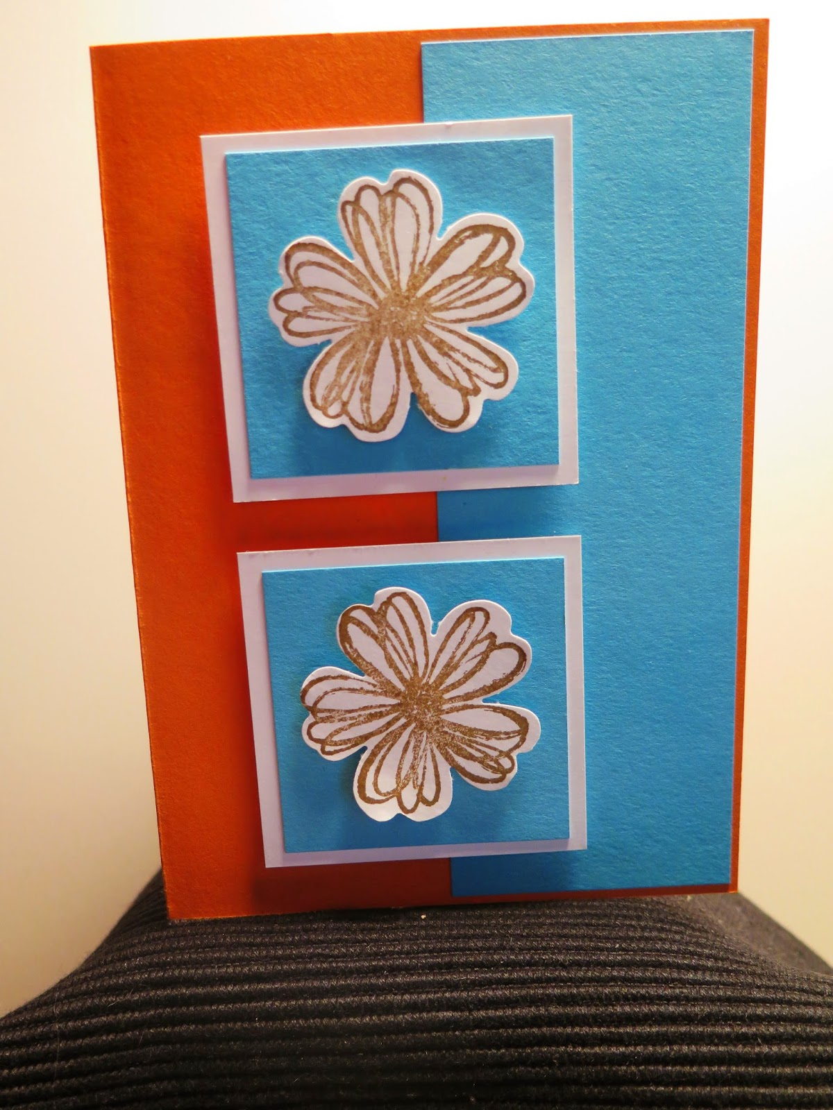 Day 12  what about colour zena kennedy independant stampin up demonstrator,