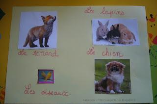 Activité manuelle collage animaux