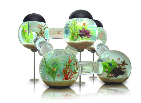 20 creative and unusual fish tank aquariums spicytec for Labyrinth fish tank