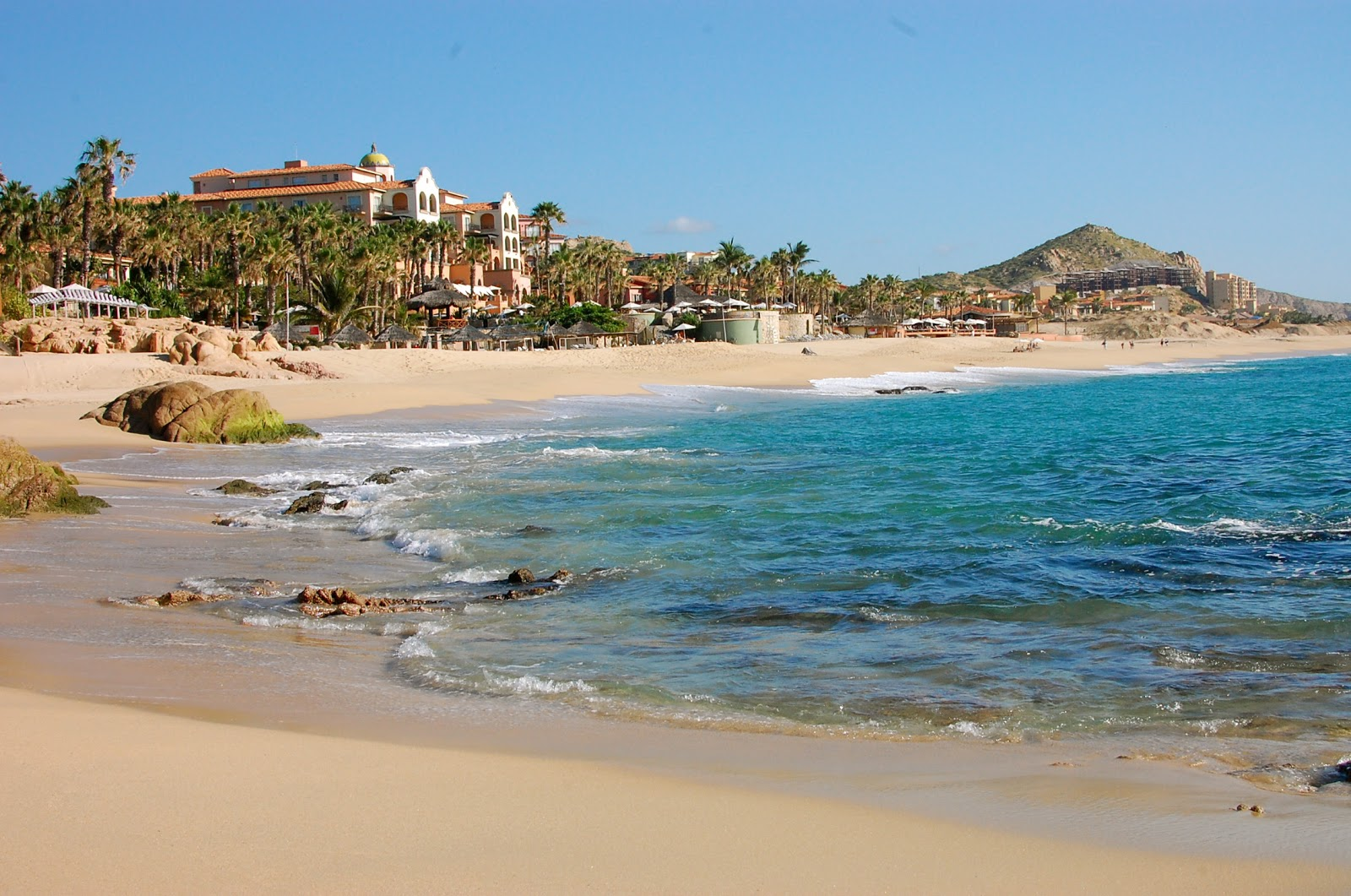 Socal fish n tips cabo san lucas surf fishing trip for Fishing in cabo