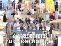 GALERIA DE FOTOS CHILE SIEMPRE 2011