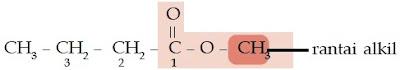 metil butirat