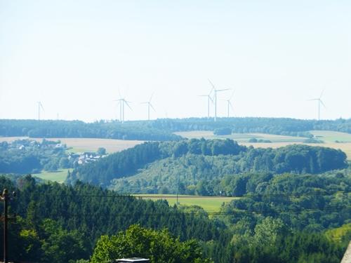 Hunsrück Wald Hunsrückhöhen Posseliesje
