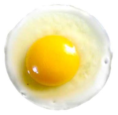 visokoproteinska hrana