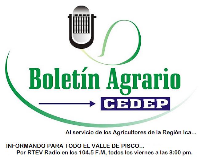 Boletín Agrario
