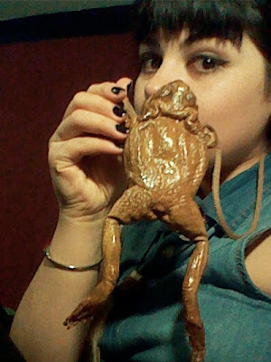 taxidermy frog purse