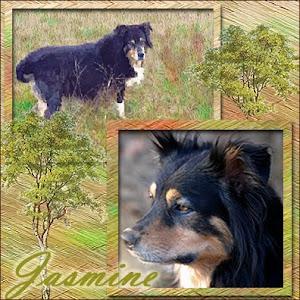 RIP Jasmine