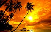 #15 Sunset Wallpaper