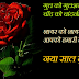 Happy New Year 2014 Shayari in Hindi | New Year Hindi Shayari