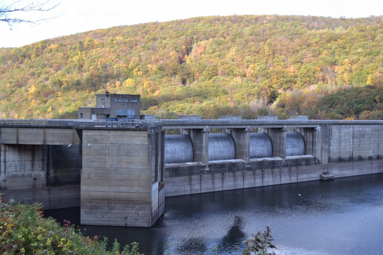 Because of our children for Kinzua dam fishing
