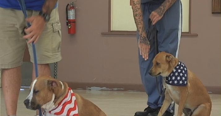 What Kind Of Inmates Train Service Dogs