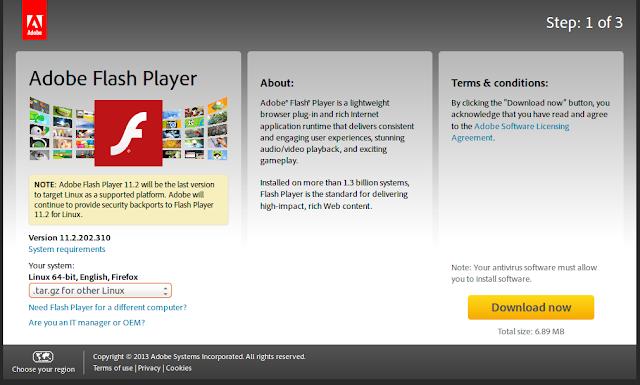 Adobe Flash Player ActiveX & Plugin 64-bit - Should I ...