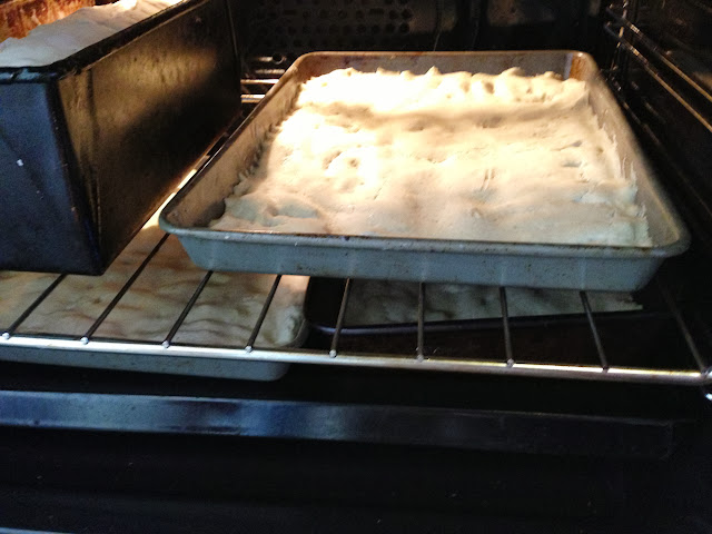 pizza dough - leave to rise