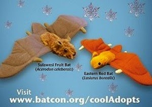 Save a Bee Adopt a Bat