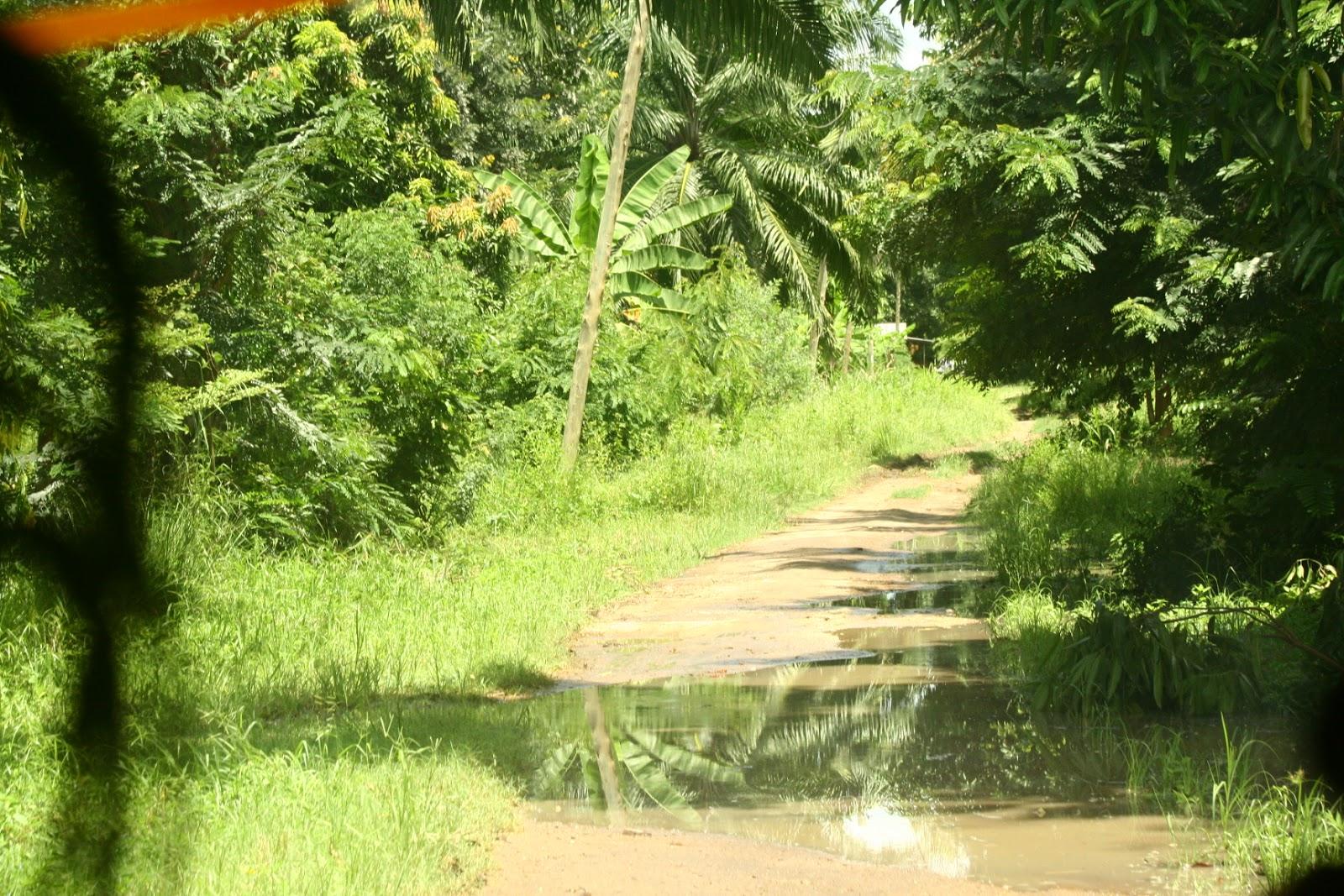 udzungwa national park tanzania