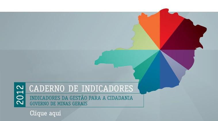 CADERNO DE INDICADORES 2012