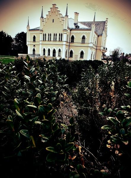 palatul ruginoasa aprilie 2013