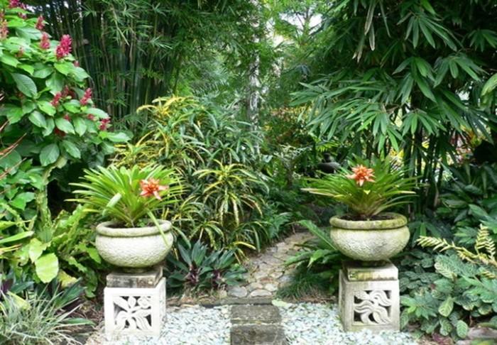 Home designs and garden blog aesthetics with modern for Tropical garden designs