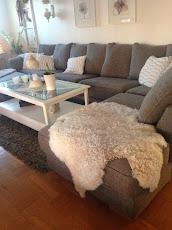 Opus 3,5 sits med divan