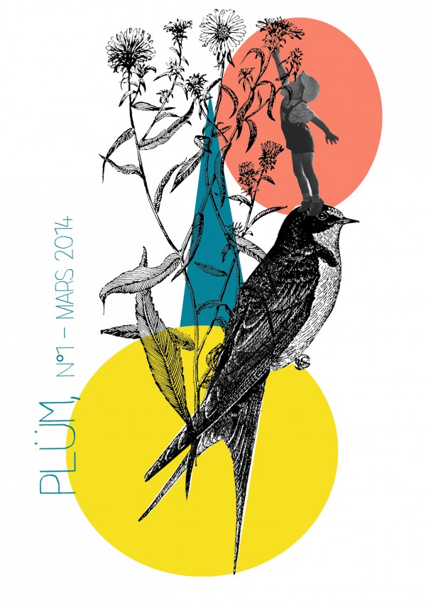 http://aucabaretdesoiseaux.org/categorie-produit/plum-magazine/