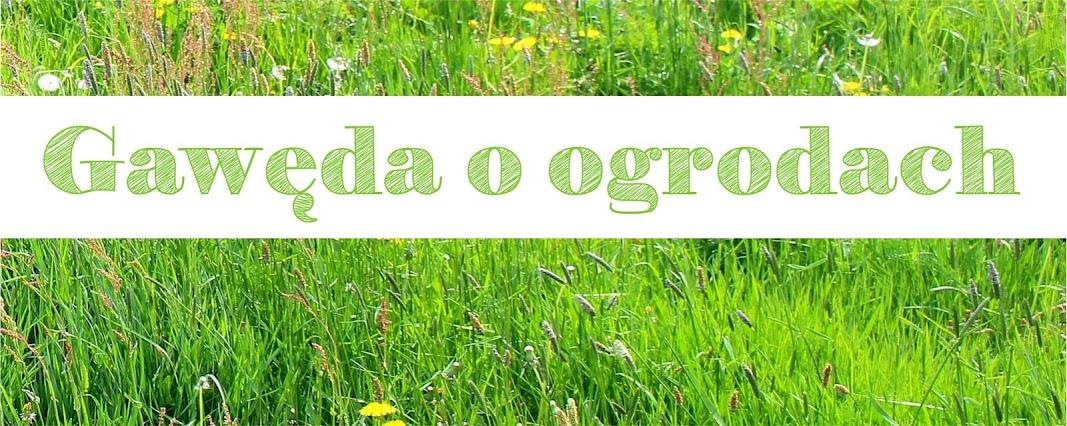 Gawęda o ogrodach | blog ogrodniczy