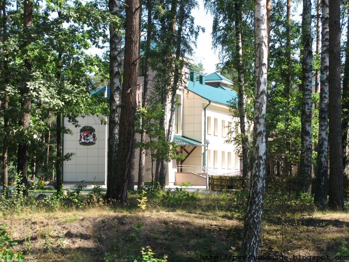 Беловежская пуща