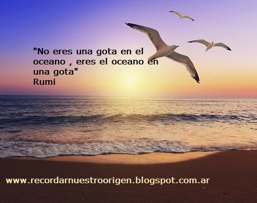 """""""No eres una gota en el océano eres el océano en una gota""""  Rumi"""