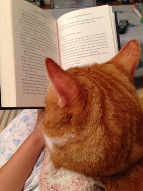 Ripple reading