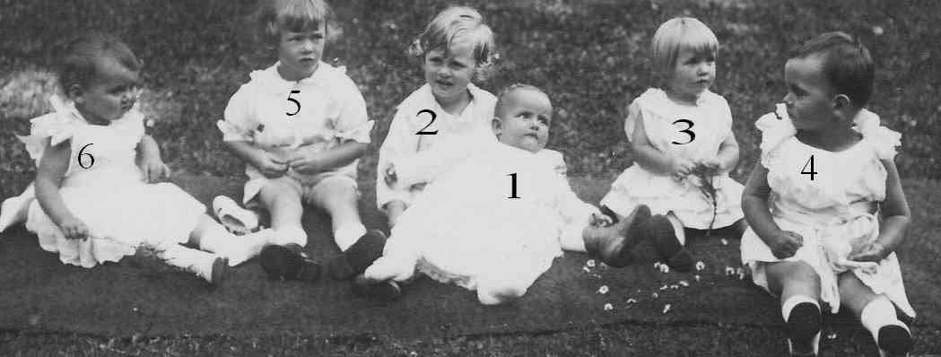 Princes et Princesses de Bavière, Saxe et de Luxembourg