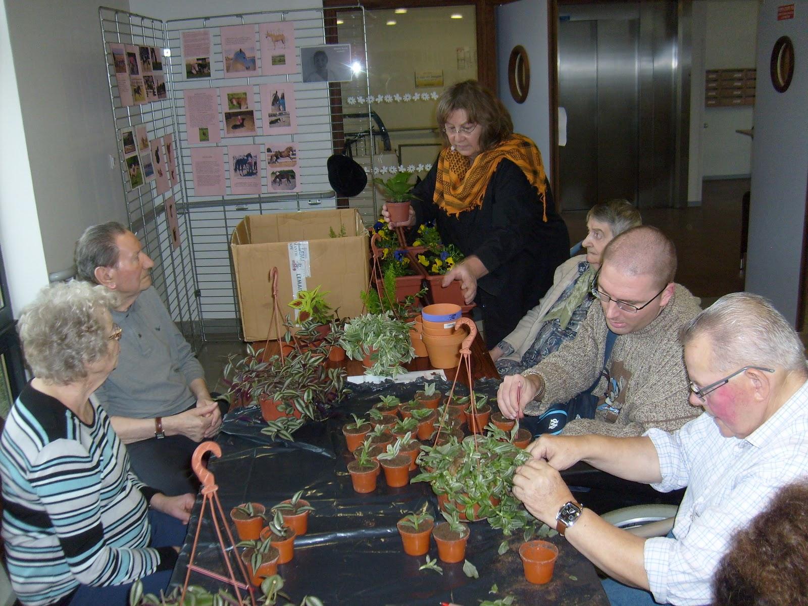 News de la maison du telhuet forum des passions atelier for Monsieur jardinage conseil
