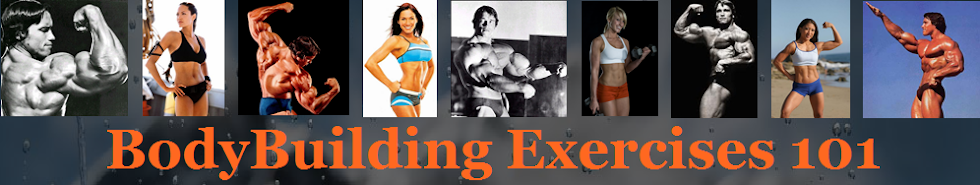 BodyBuilding Exercises 101