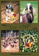Join me on The Free Range Life!