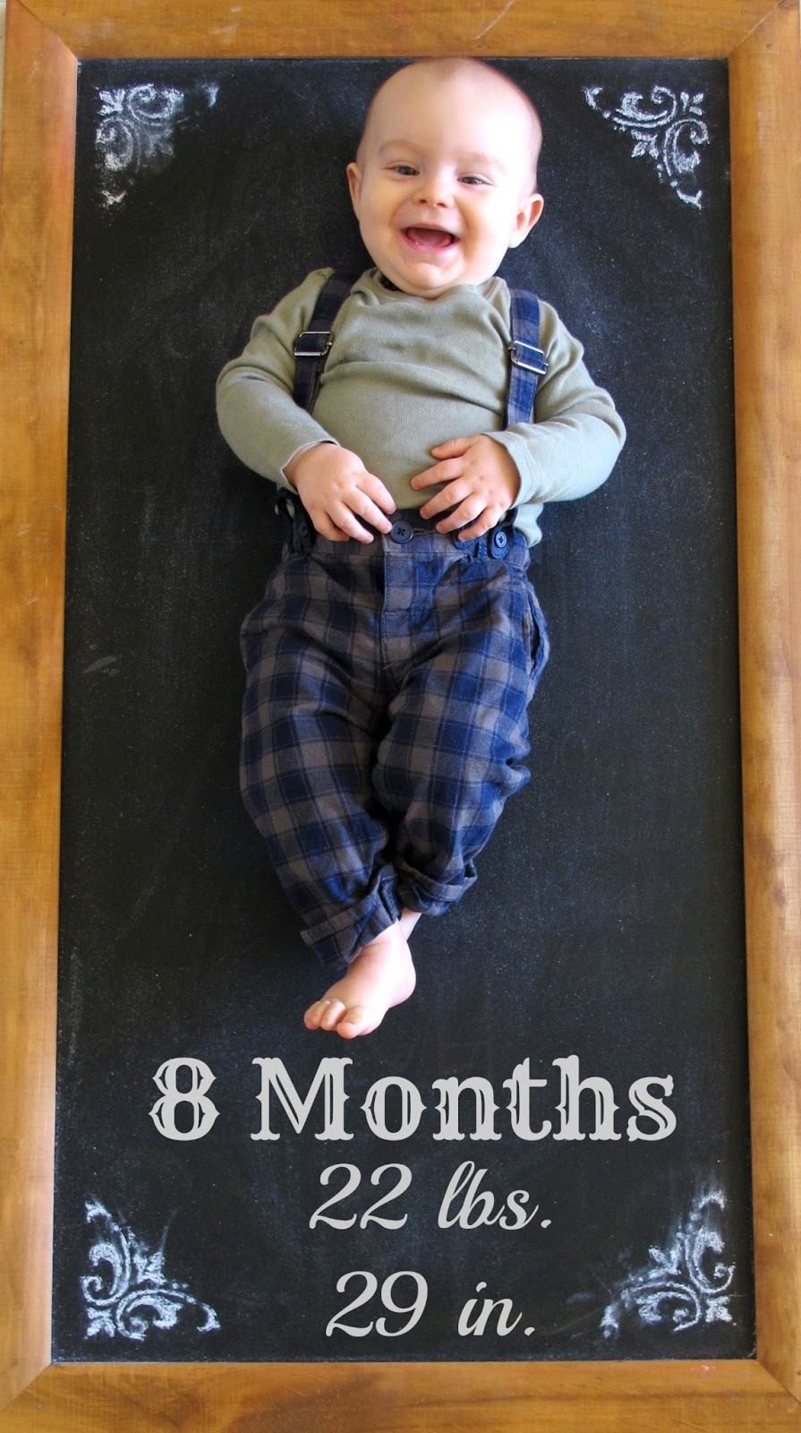 8 Month Baby Update Dream Book Design