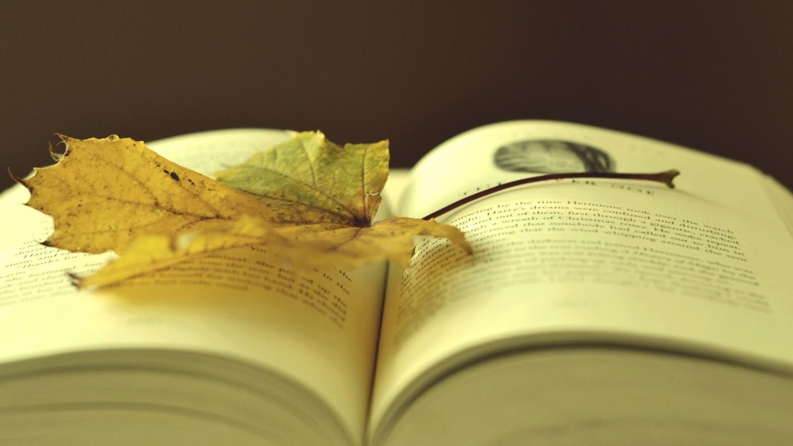 Leaf On A Book