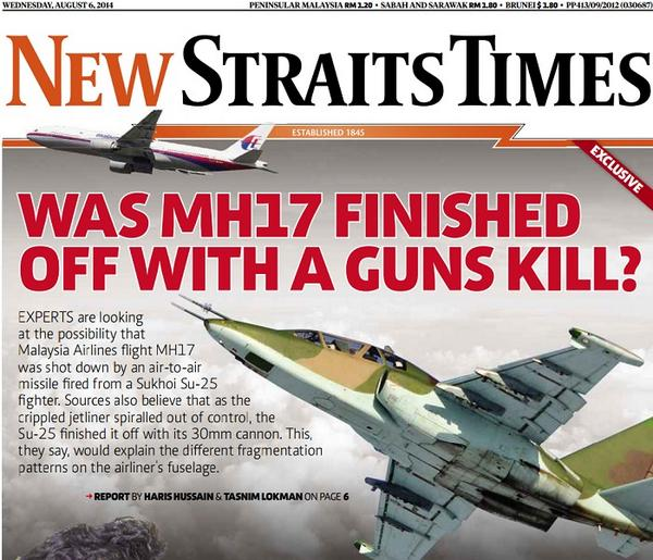 MH17+SU25.jpg