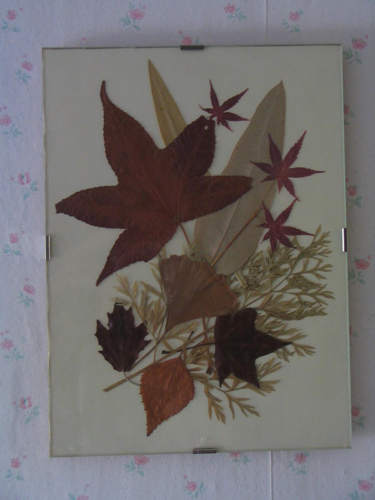tiernas cucadas manualidades cuadros con hojas secas