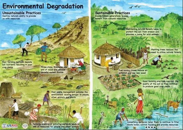 destruction of environment essay