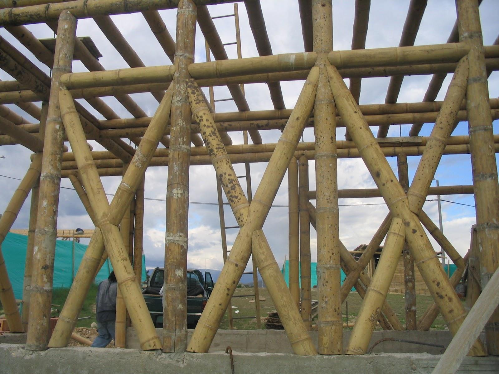 estructura de muros y forjado en guadua para una casa
