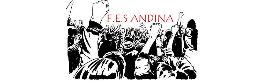 F.E.S. Andina (Federación de Estudiantes Secundarios)